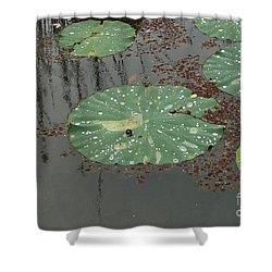 Hawaiian Lilly Pad 1 Shower Curtain