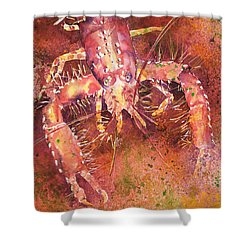 Hawaiian Lobster Shower Curtain by Tanya L Haynes - Printscapes