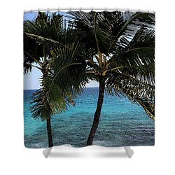 Hawaiian Palm Trees - All Images Copyright Karen L. Nicholson Shower Curtain