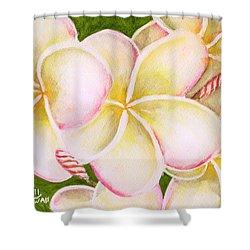 Hawaiian Tropical Plumeria Flower #483 Shower Curtain by Donald k Hall