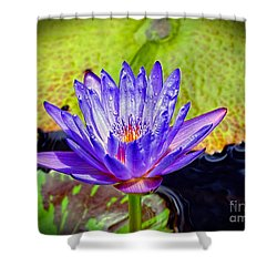 Hawaiian Water Lily Shower Curtain by Sue Melvin