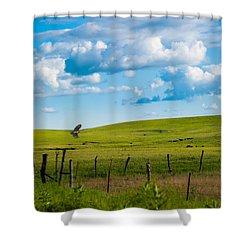 Hawk And Flint Hills Shower Curtain