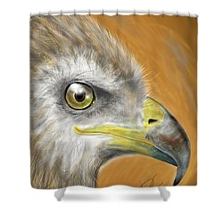 Shower Curtain featuring the digital art Hawk by Darren Cannell
