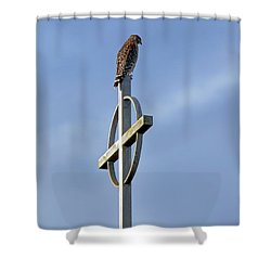 Hawk On Steeple Shower Curtain by Richard Rizzo