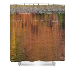 Hawkins Autumn Abstract 2015 Shower Curtain