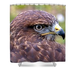 Hawks Eye View Shower Curtain by Stephen Melia