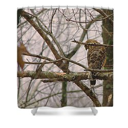 Branch Manager Shower Curtain by Dennis Baswell