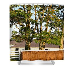 Hay Bales And Trees Shower Curtain by Todd A Blanchard