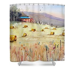 Hay Bales Shower Curtain by Ryan Radke