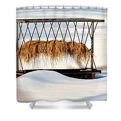 Hay Feeder In Winter Shower Curtain
