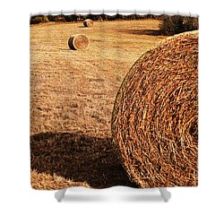 Hay In The Field Shower Curtain by Tamyra Ayles