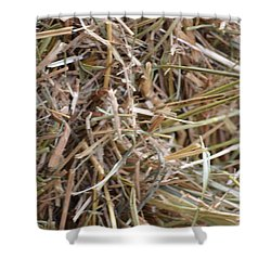 Hay Shower Curtain by Linda Geiger