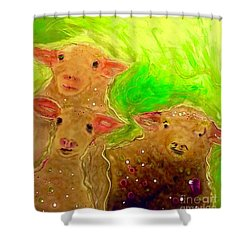 Hay What Dew Ewe Know Shower Curtain