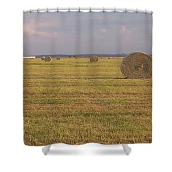 Hayfield Perspective Shower Curtain by Susan Williams