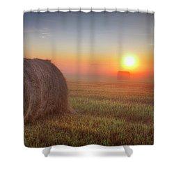 Hayrise Shower Curtain