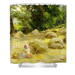 Haytime Shower Curtain by Rosa Appleton