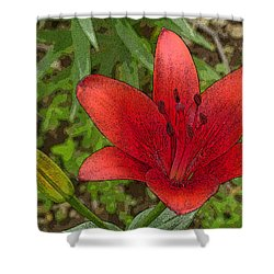 Shower Curtain featuring the digital art Hazelle's Red Lily by Jana Russon