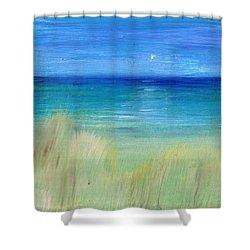 Hazy Beach Mini Oil On Masonite Shower Curtain by Regina Valluzzi