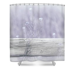 Shower Curtain featuring the photograph Hazy Lavender Wildflowers by Jennie Marie Schell
