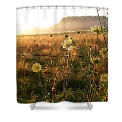 Hazy Morning Shower Curtain