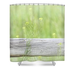 Shower Curtain featuring the photograph Hazy Yellow Wildflowers by Jennie Marie Schell