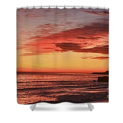 hd 330 Dog Beach 1 HDR Shower Curtain by Chris Berry