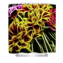 Hdr Light Drawing Shower Curtain