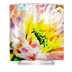 He Did Everything Beautiful In His Time Ecclesiastes 3 11 Shower Curtain