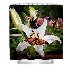 Shower Curtain featuring the photograph He Still Gives Me Butterflies by Karen Wiles