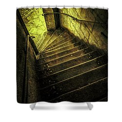 Head Full Of Drought Shower Curtain by Russell Styles
