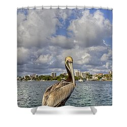 Head In The Clouds Shower Curtain by Debra and Dave Vanderlaan