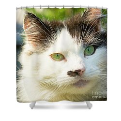 Head Of Cat Shower Curtain by Irina Afonskaya