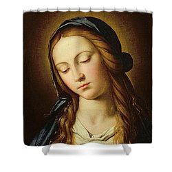 Head Of The Madonna Shower Curtain by Il Sassoferrato