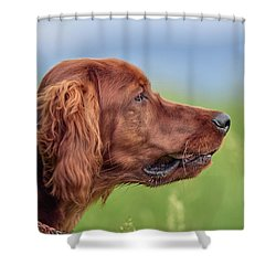 Head Study Shower Curtain
