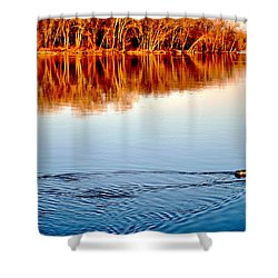 Heading Home Shower Curtain