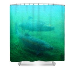 Shower Curtain featuring the photograph Heading Home by Timothy Bulone