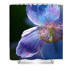 Shower Curtain featuring the photograph Healing Light by Byron Varvarigos