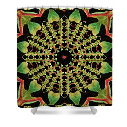 Healing Mandala 13 Shower Curtain by Bell And Todd
