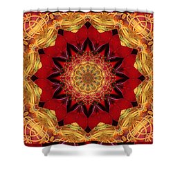 Healing Mandala 28 Shower Curtain by Bell And Todd