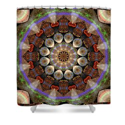 Healing Mandala 30 Shower Curtain by Bell And Todd