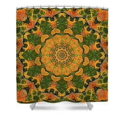 Healing Mandala 9 Shower Curtain by Bell And Todd