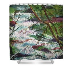 Shower Curtain featuring the painting Healing Waters by Ellen Levinson
