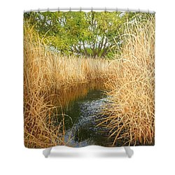 Hear The Croaking Frogs Shower Curtain