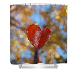Shower Curtain featuring the photograph Heart Amongst Tree Top by Debra Thompson