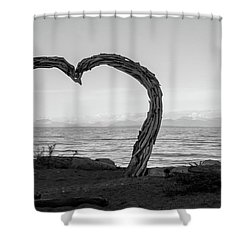 Heart Arch Shower Curtain