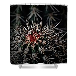 Heart-blood Shower Curtain by Tim Good