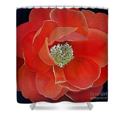 Heart-centered Rose Shower Curtain