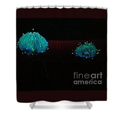 Shower Curtain featuring the photograph Heart Jelly by Vanessa Palomino