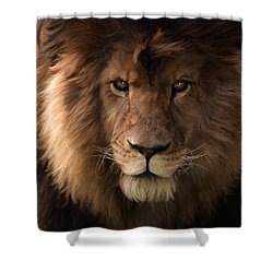 Heart Of A Lion - Wildlife Art Shower Curtain