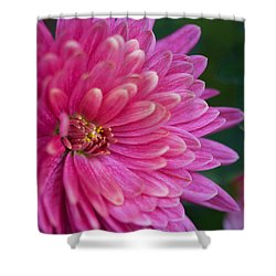 Heart Of A Mum Shower Curtain